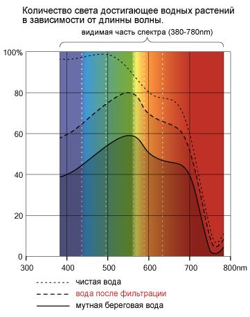 количество света достигающее водных растений в зависимости от длинны волны. © 2005 Ian Luna